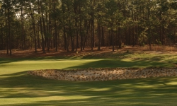pineneedlesgolfcourse0121